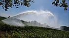 Спринклерные системы полива для сельского хозяйства, системы полива, дождеватели, полив поля, модель S 70, фото 4