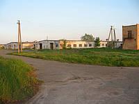 Животноводческий комплекс, Ферма КРС под Киевом