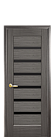 Дверне полотно Лінея з чорним склом колір Сірий