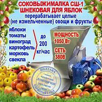 Шнековая Соковыжималка с редуктором для яблок с нержавейки СШ -2 380В пресс томатный, фото 1