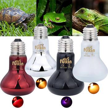Освещение террариумов лампы для обогрева рептилий и животных