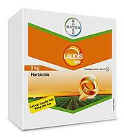 Гербіцид для кукурудзи Лаудіс®, в.г - 3 кг   Bayer