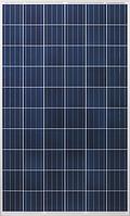 Солнечная панель 270 Вт Risen RSM60-6-270P (5BB, поликристалл)