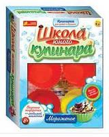 """Набор """"Школа юного кулинара: Мороженое"""" 14121003Р"""