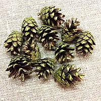 Шишки сосновые Зеленый винтажный 10штук, фото 1