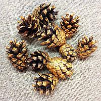 Шишки сосновые Золото 10штук, фото 1