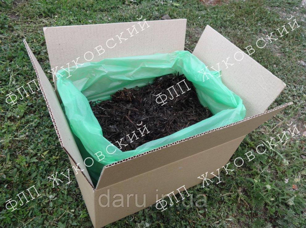 Грибная коробка для выращивания шампиньонов Семейная Королевская (коричневый)