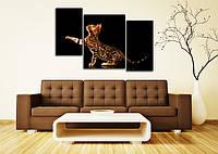 Модульная картина, Картина на холсте, Постер, Фотокартина, Картина, Фотопечать  90х60 см.