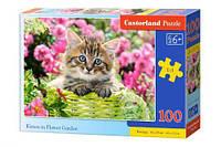 Пазл Castorland Котенок 100 элементов В-111039 (tsi_53059)