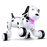 Робот-собака Smart Dog 777-338, фото 6