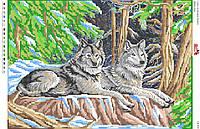 Схема для вишивки бісером вовки в Лисичанске. Сравнить цены f7c7437cbbfed