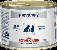Royal Canin Recovery (Роял Канин Резовери) - диетические консервы для собак 12шт*200г