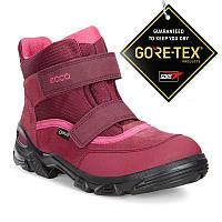 ea6ec5393 Зимние ботинки Ecco в категории ботильоны, ботинки женские в Украине ...
