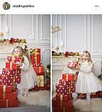 Красивое платье для девочек 2-5 лет , фото 2