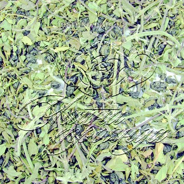 """Зелений чай """"М'ятний"""""""