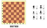 Стенд «Шахматы»