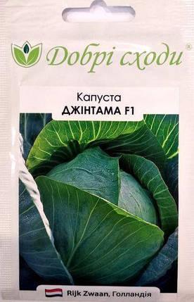 Семена капусты Джинтана F1 20шт ТМ ДОБРІ СХОДИ, фото 2