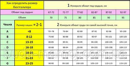 Размерная таблица бюстгальтеров