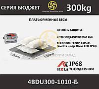 Весы платформенные низкопрофильные 4BDU300-1010-Б, фото 1