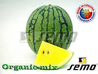 Арбуз желтый ПРИМАГОЛД F1 / PRIMAGOLD F1, ТМ SEMO (Чехия) проф. пакет 100 семян