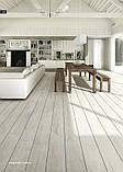 Arcana Ceramica іспанська плитка для підлоги і стін, фото 10
