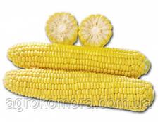 1010 F1 кукурудза цукрова 2500нас. Lark Seeds