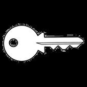 Чохли для автомобільних ключів