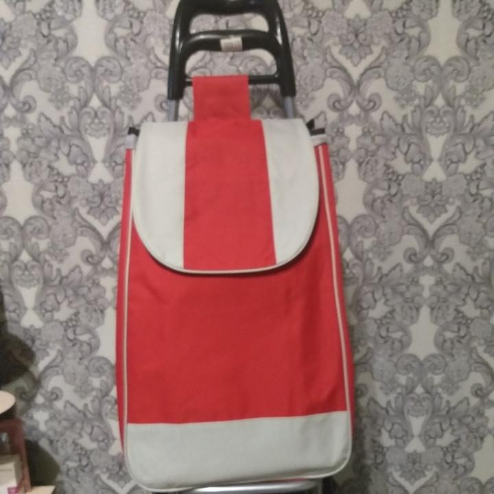 Тележка с сумкой на металлических колёсах грузоподъемностью  до 50 кг.