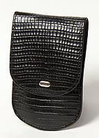 Маникюрный набор PETEK 1462 Черный (1462-041-01), фото 1