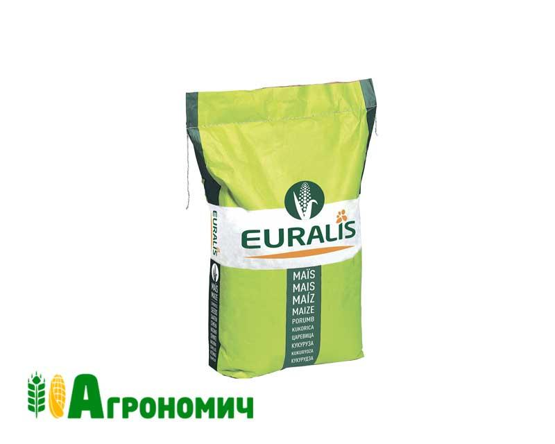 Насіннякукурудзи ЄС Метод   ФАО 380   Euralis