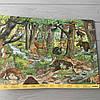 Красочный набор книг Мой большой Виммельбух в коробке, 3 шт, Анна Сьюз, фото 7