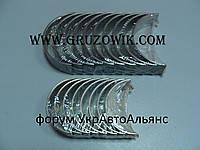 Вкладыши коренные 0,25 Foton, Dong Feng (CY4100Q 3,7L, CY4102QB 3,86L)