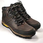 Ботинки мужские коричневые кожаные на овчине Rosso Avangard Lomerback Trend Brown утепленные