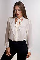 Блузка К 00484 с 02