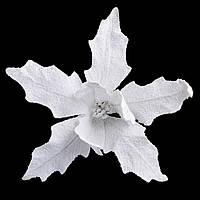 Пуансеттия 26 см с клипом, белая