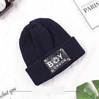 Теплая шапка для мальчика синяя с отворотом и лейбой