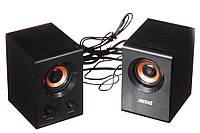 2-полосная акустическая система Jiteng D99A 220V (UKC-0602)