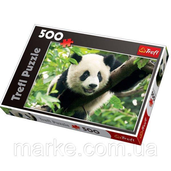 Пазл Trefl 500 Гигантская Панда (37142)