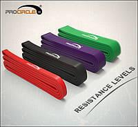 Резиновые петли для тренировок, фитнес резина комплект PROCIRCLE.  + Сумочки для хранения. Эспандер.