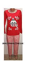 Пижама женская теплая на байке L,XL,2XL,3XL арт 7695 Турция