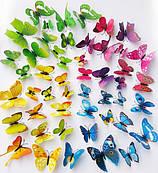 Стикеры 3D (бабочки, ромашки)