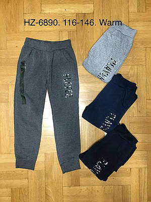 Спортивные брюки утепленные для мальчиков Active Sport 116-146 р.р.