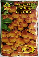 Мицелий Опенок летний  10гр