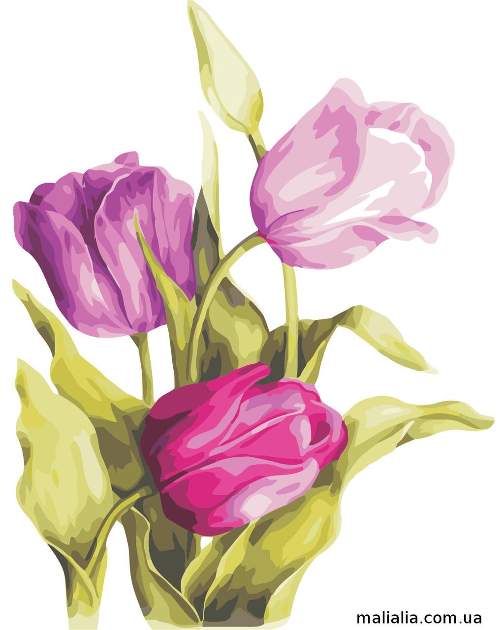 Картины по номерам 40*50 см В КОРОБКЕ Нежные тюльпаны Artstory