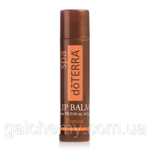 DōTERRA® SPA Lip Balm – Tropical / доТЕРРА СПА, питательный бальзам для губ «Тропический», 4.5 гр