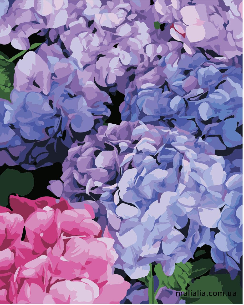 Картины по номерам 40*50 см В КОРОБКЕ Цветущая гортензия Artstory
