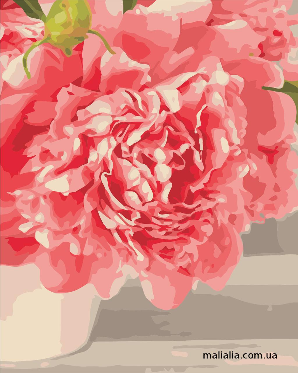 Картины по номерам 40*50 см В КОРОБКЕ Розовые пионы Artstory