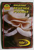 Мицелий Вешанка розовая 10гр
