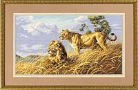 Набор для вышивки крестом Dimensions 3866 «Африканские львы»