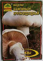 Мицелий Шампиньон Крупноплодный 10гр